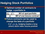 hedging stock portfolios10