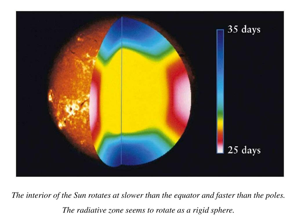 The interior of the Sun rotates at slower than the equator and faster than the poles.