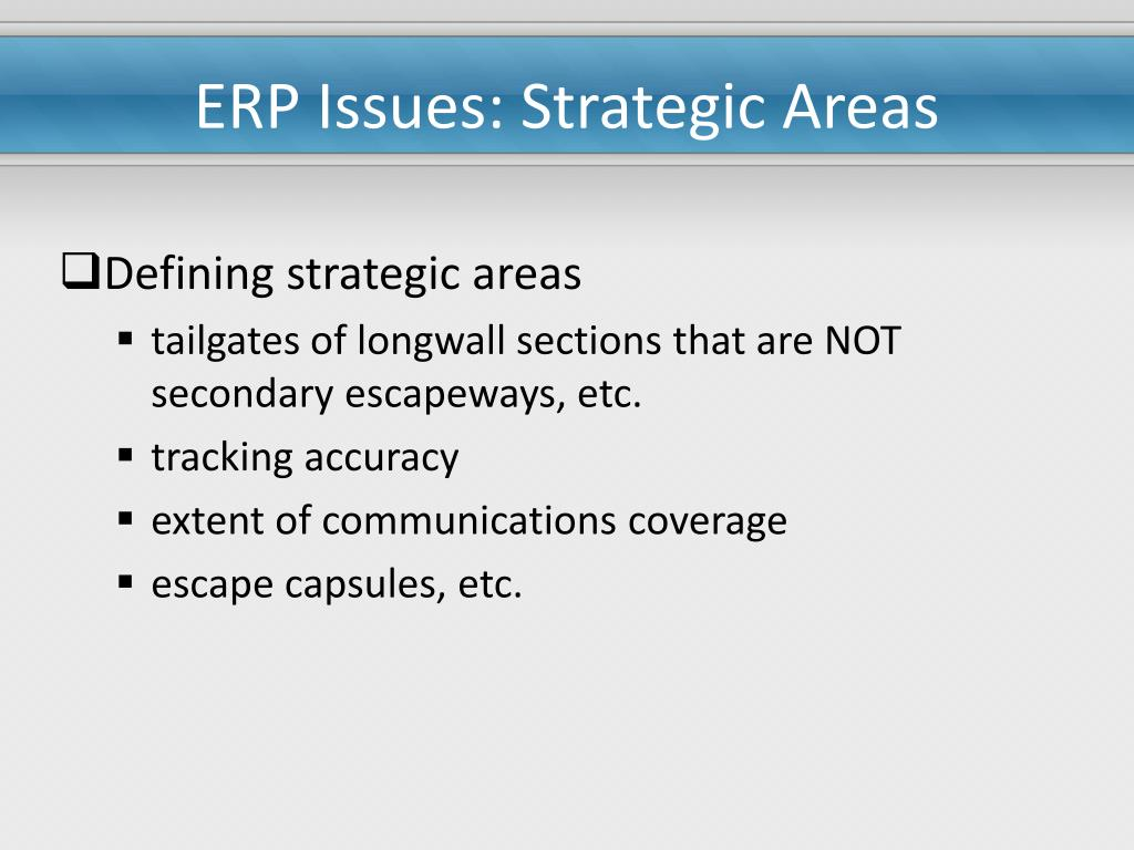 ERP Issues: Strategic Areas