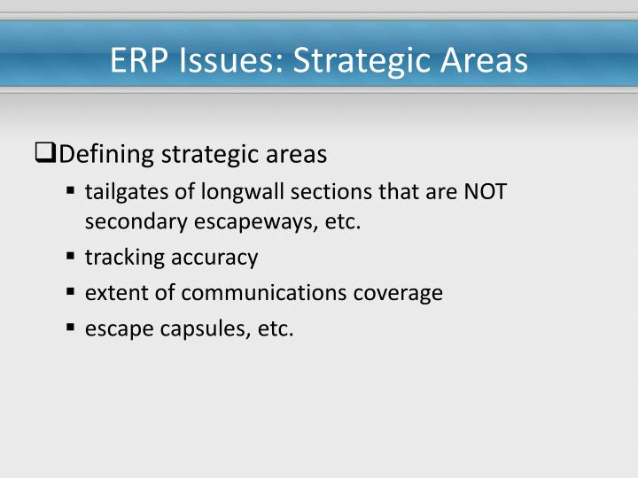 Erp issues strategic areas