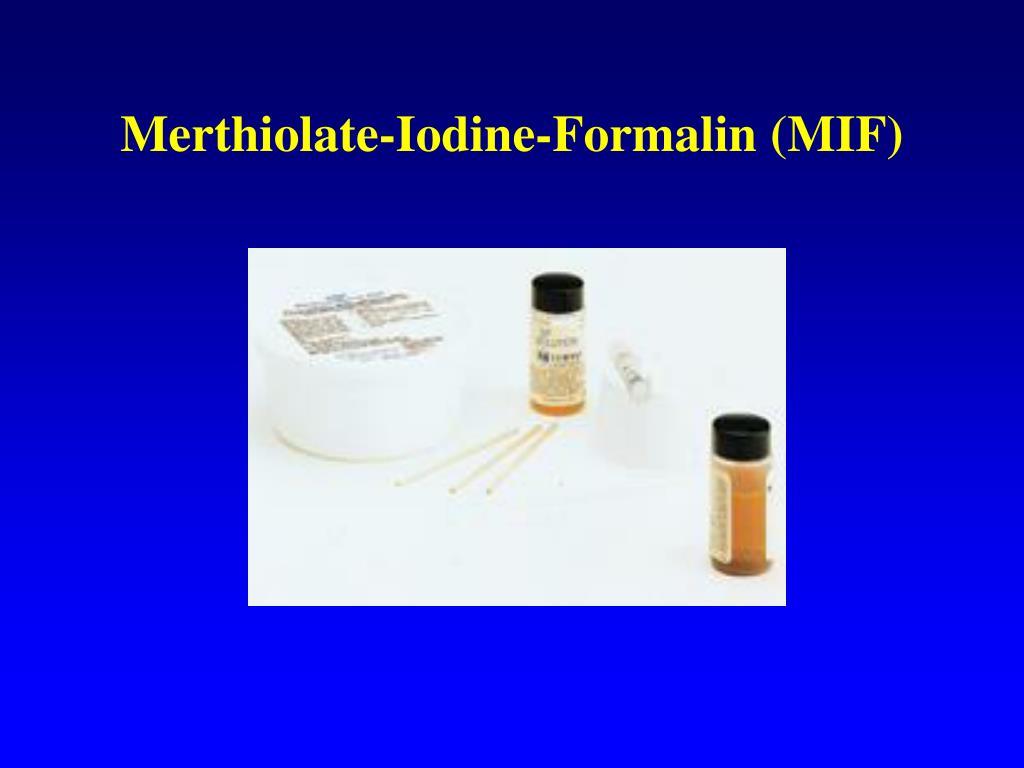 Merthiolate-Iodine-Formalin (MIF)