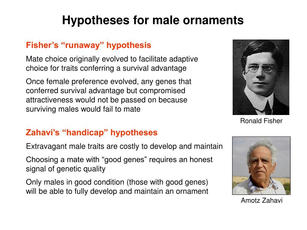 """Zahavi's """"handicap"""" hypotheses"""