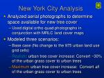 new york city analysis