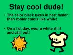 stay cool dude