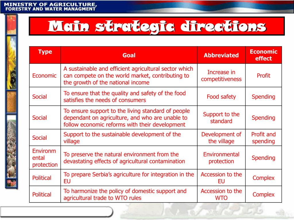 Main strategic directions