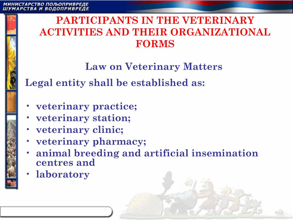PARTICIPANTS IN THE VETERINARY ACTIVITIES AND THEIR ORGANIZATIONAL FORMS