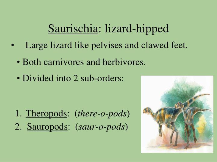 Saurischia lizard hipped
