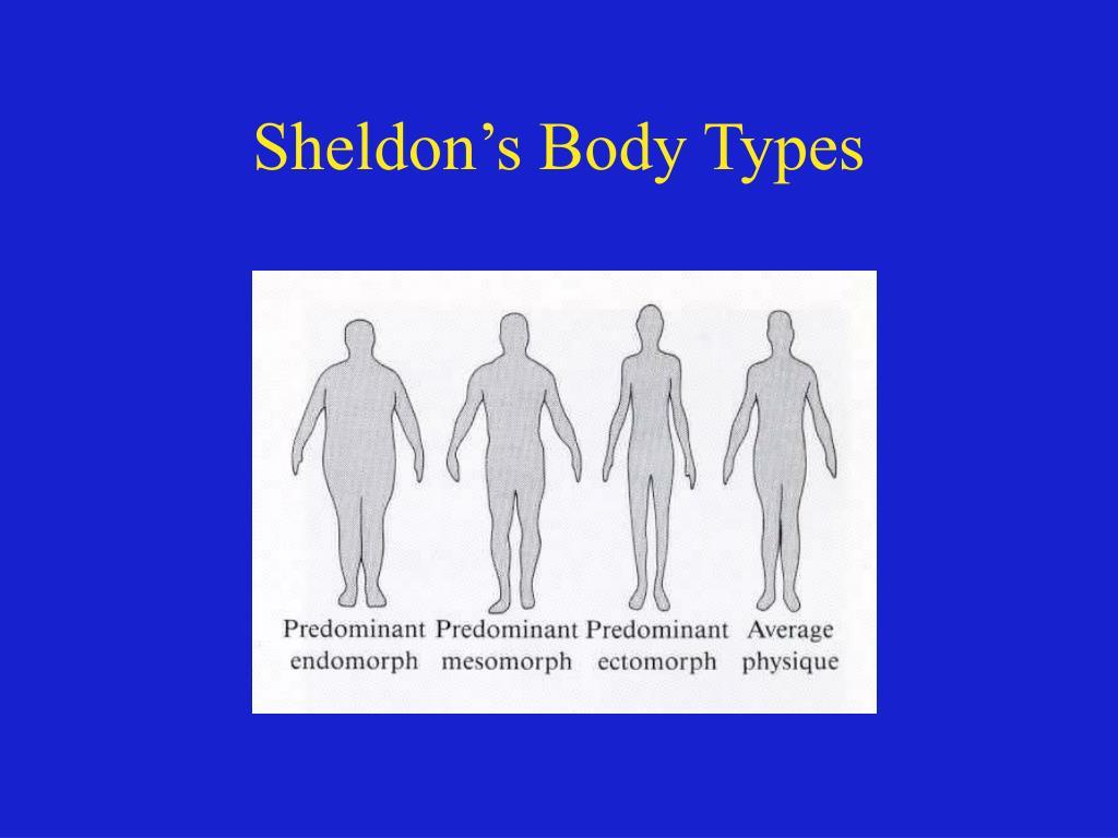 Sheldon's Body Types