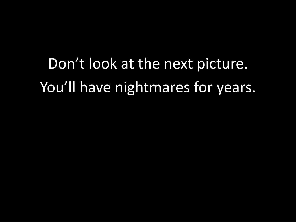 Don't look at the next picture.