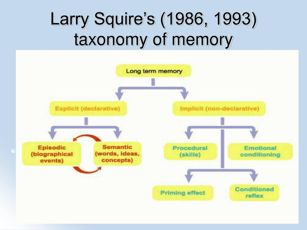 Larry Squire's (1986, 1993) taxonomy of memory