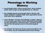 phonology in working memory63