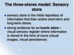 the three stores model sensory store