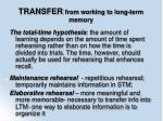 transfer from working to long term memory79
