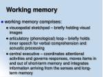 working memory47