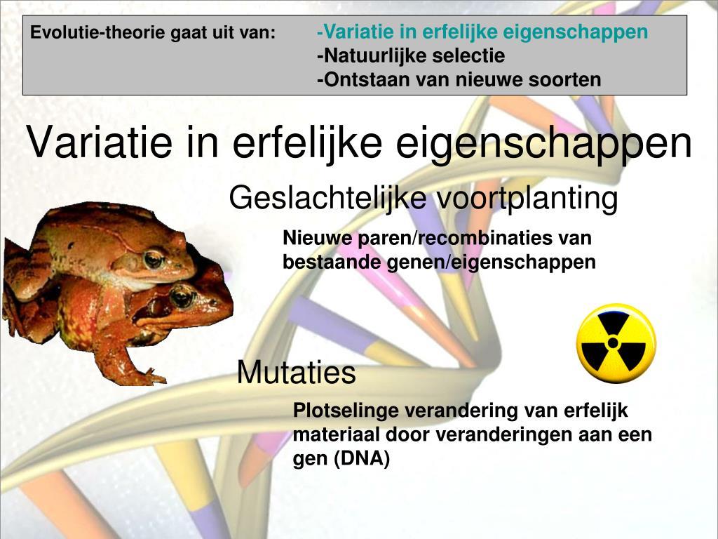 Evolutie-theorie gaat uit van: