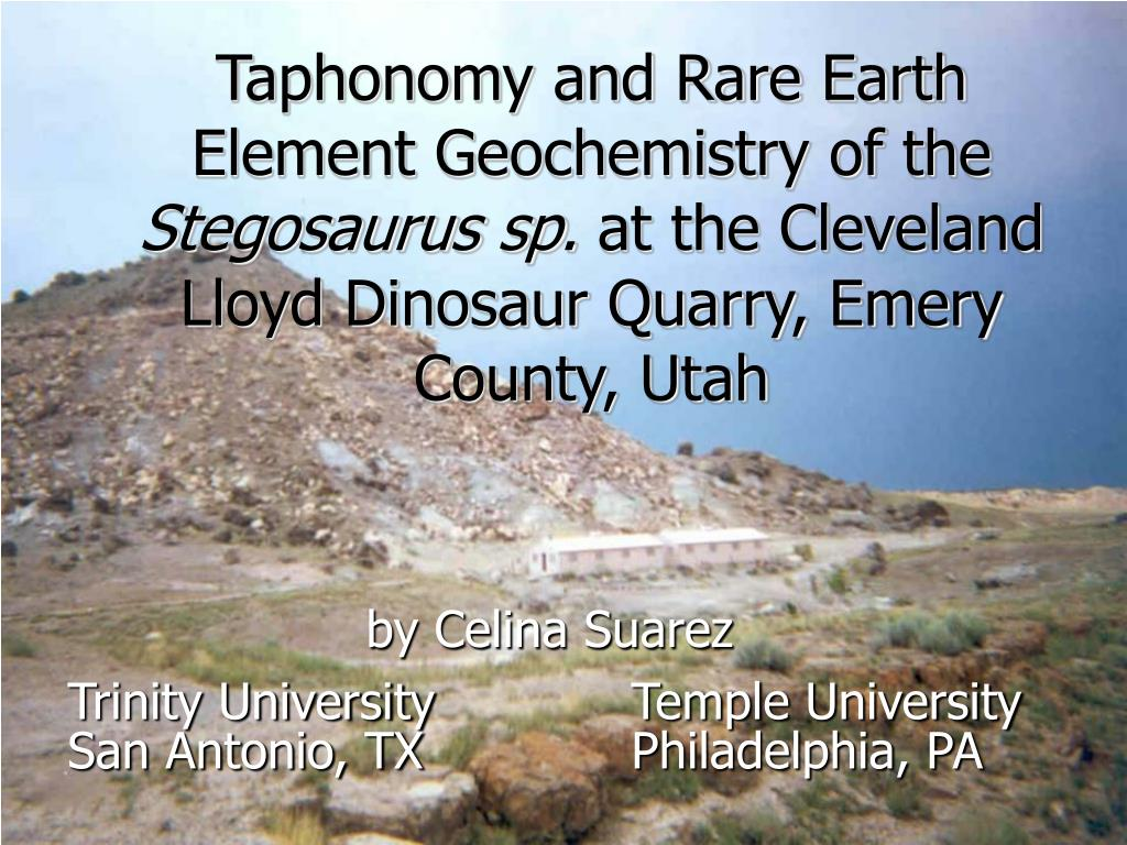 Taphonomy and Rare Earth Element Geochemistry of the