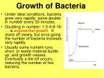 growth of bacteria