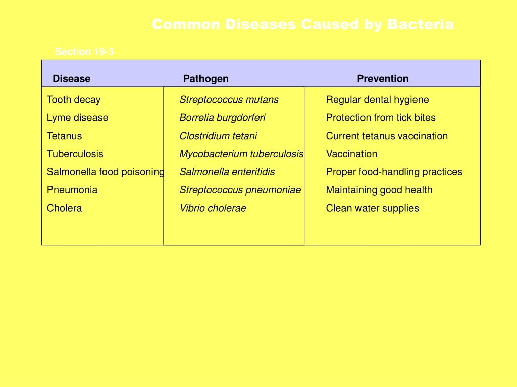 Common Diseases Caused by Bacteria
