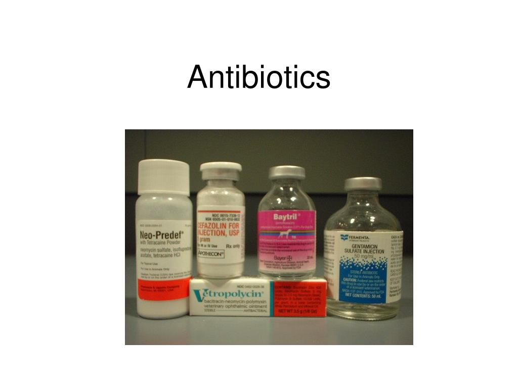 antibiotics l.