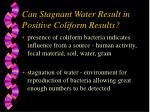 can stagnant water result in positive coliform results