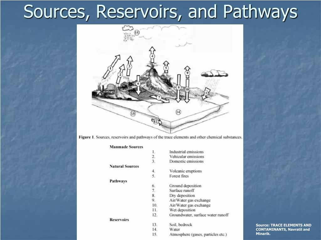 Sources, Reservoirs, and Pathways