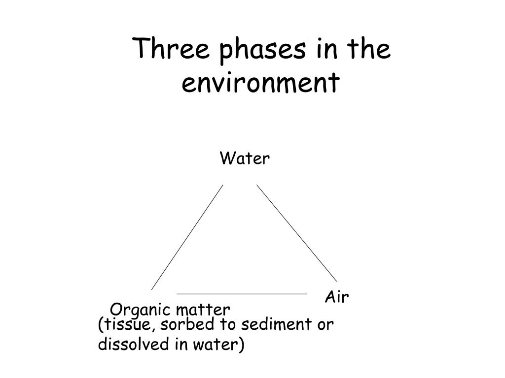 Three phases in the environment