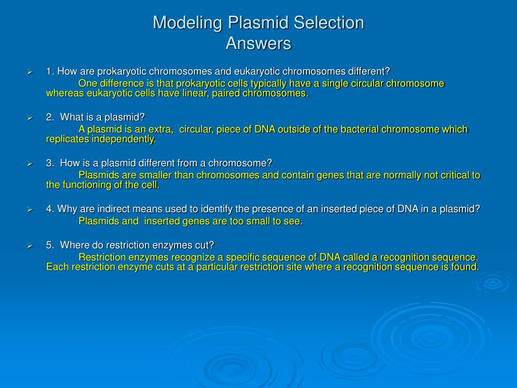 Modeling Plasmid Selection