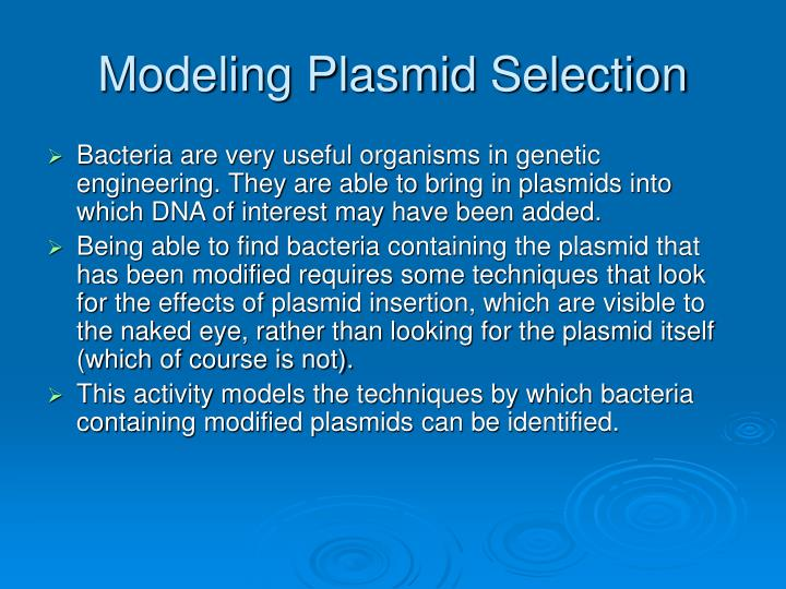 Modeling plasmid selection2
