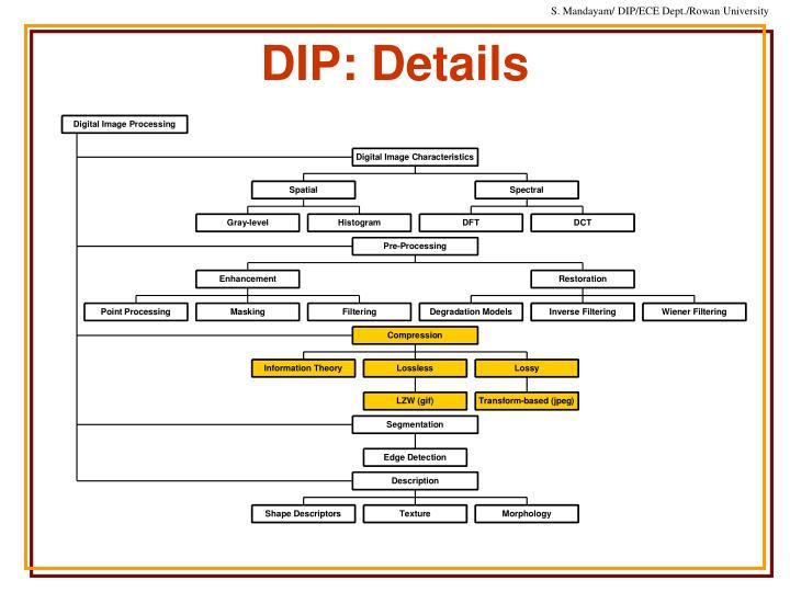 Dip details