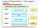 levels of responsibility tech support process