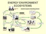 energy environment ecosystems