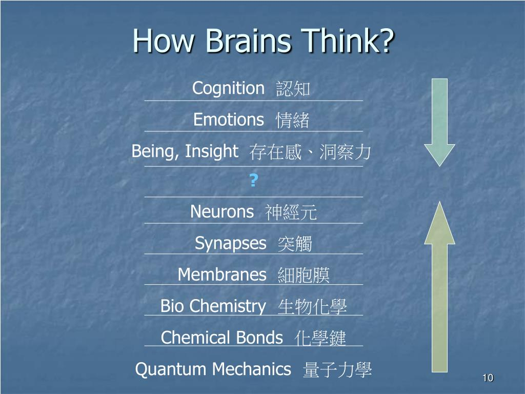 How Brains Think?
