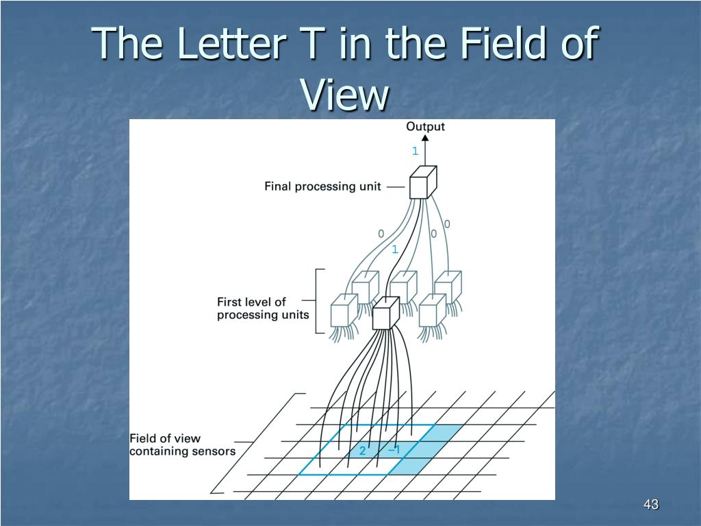 The Letter T in the Field of View