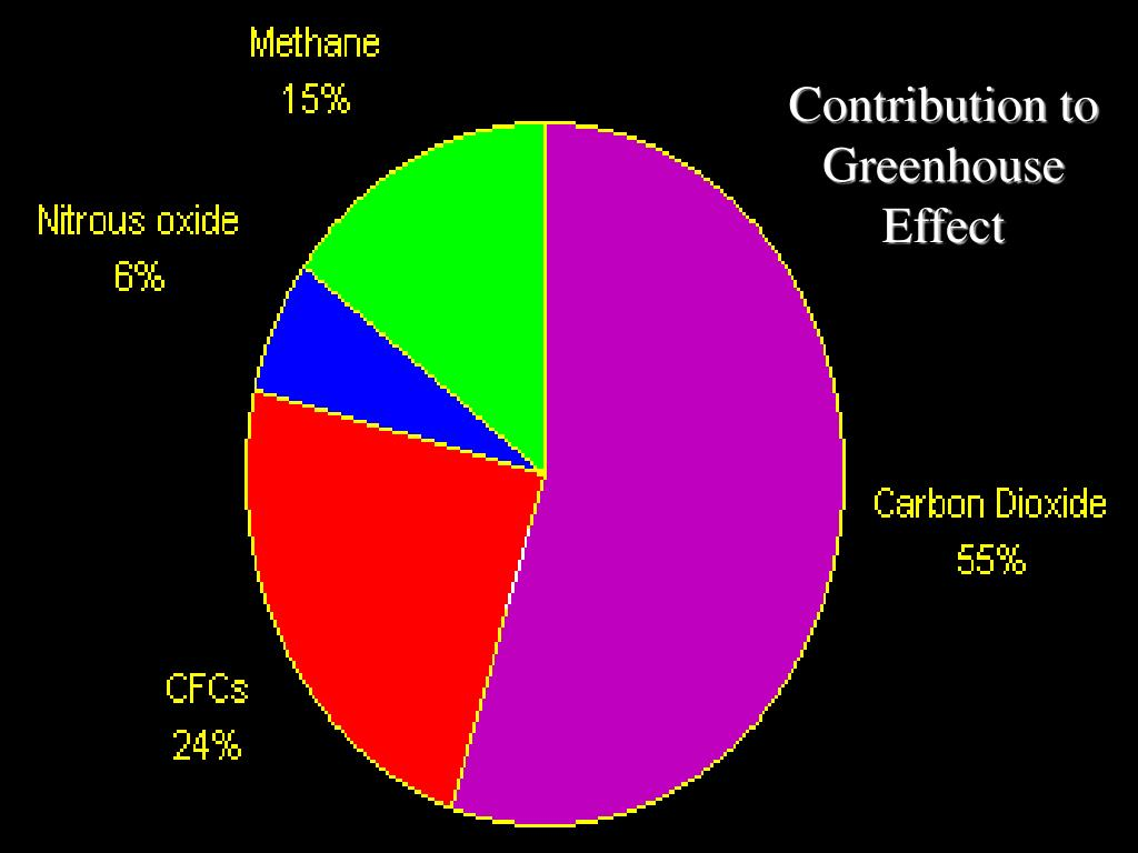 Contribution to Greenhouse Effect