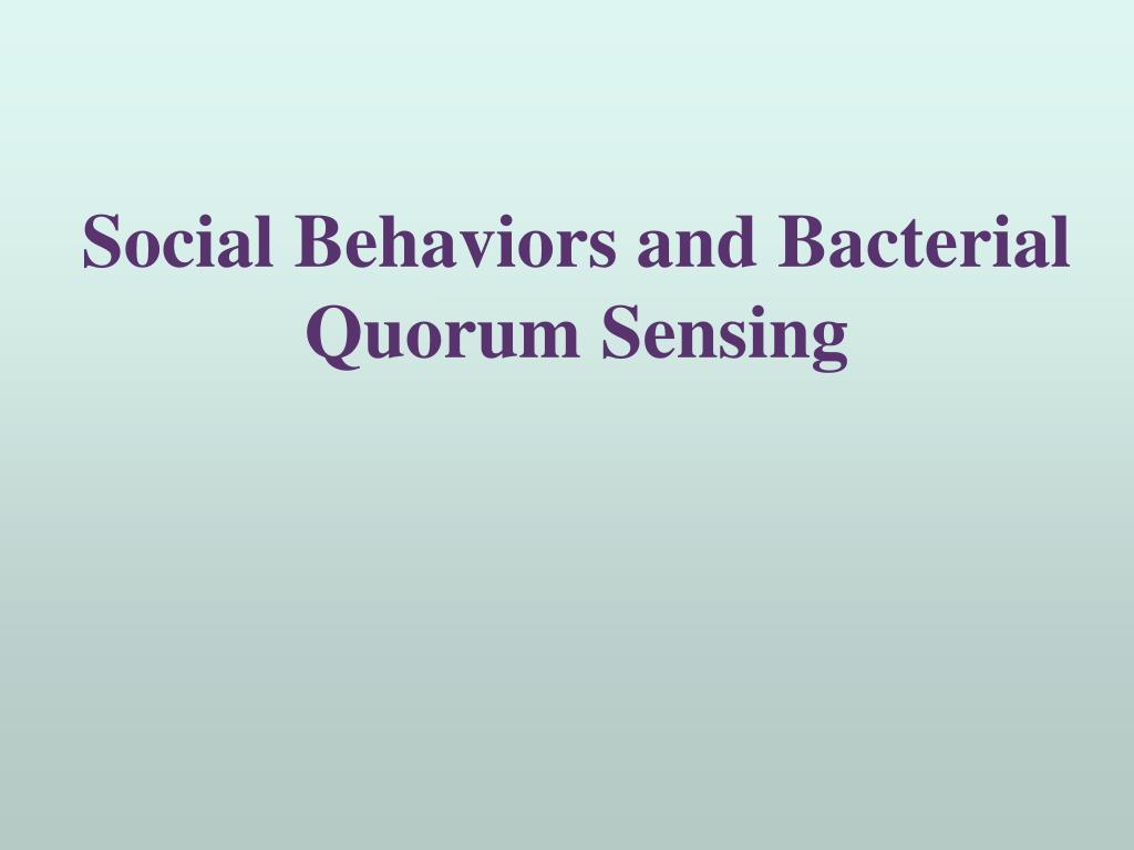 social behaviors and bacterial quorum sensing l.