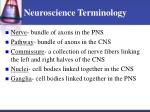 neuroscience terminology