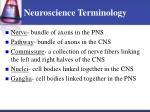 neuroscience terminology