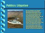 politics litigation26