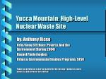 yucca mountain high level nuclear waste site