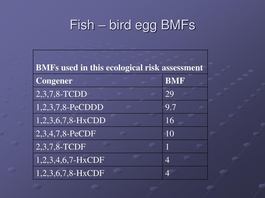 Fish – bird egg BMFs