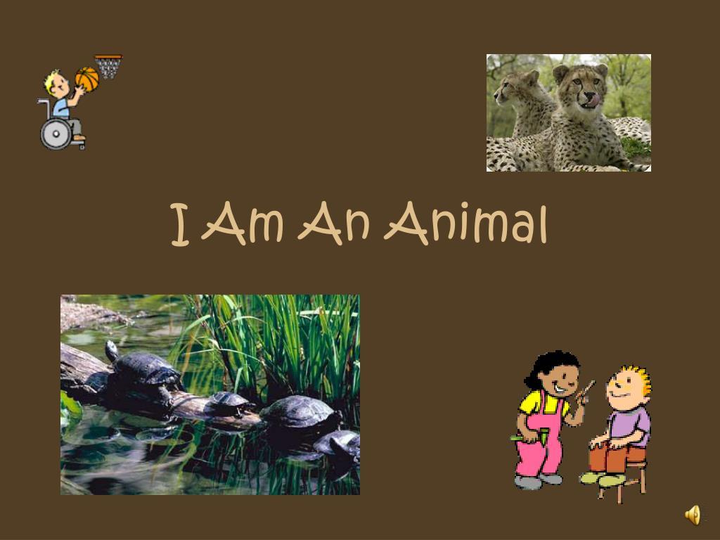 i am an animal l.