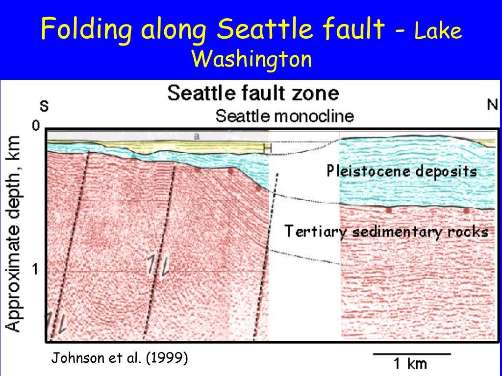 Folding along Seattle fault -