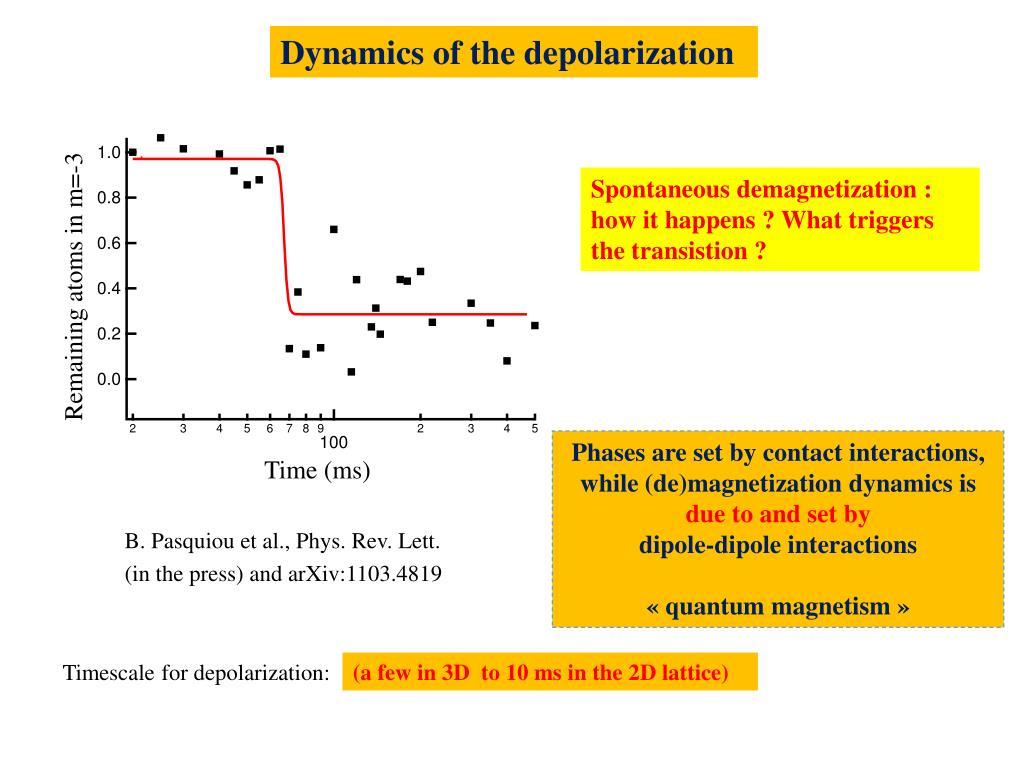 Dynamics of the depolarization