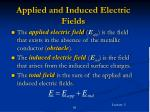 applied and induced electric fields