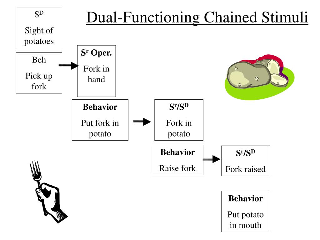 Dual-Functioning Chained Stimuli