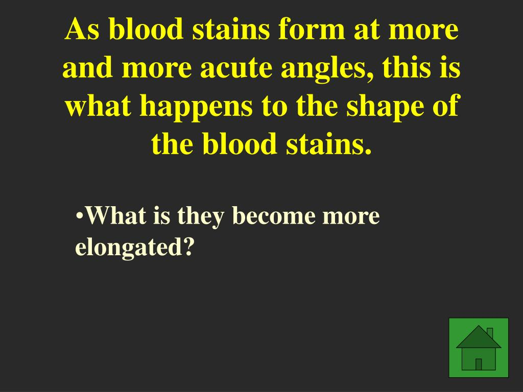 As blood stains form at more and more acute angles, this is what happens to the shape of the blood stains.