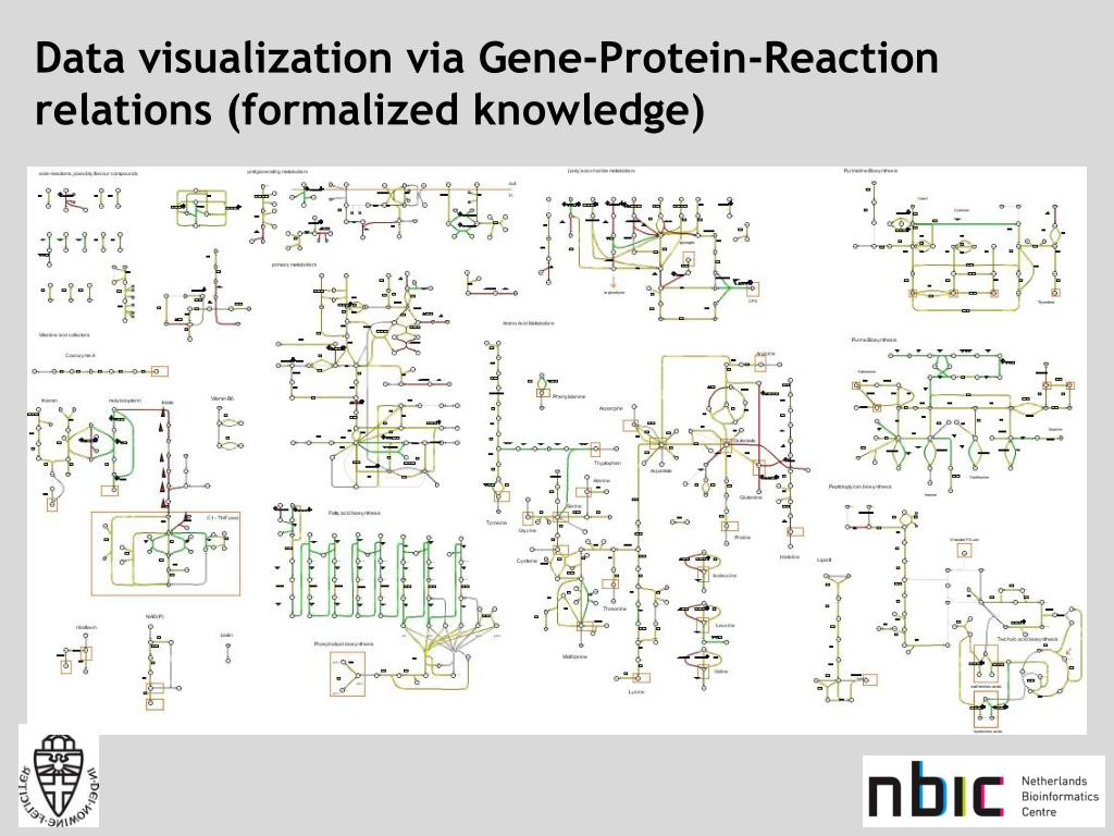 Data visualization via Gene-Protein-Reaction relations (formalized knowledge)