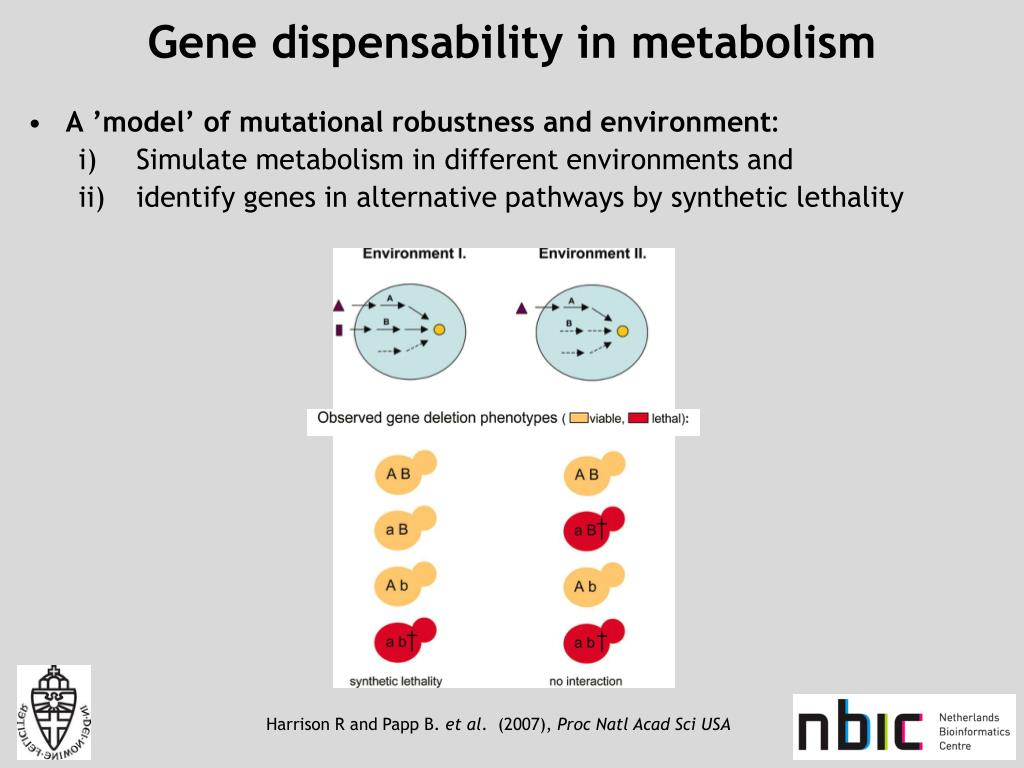 Gene dispensability in metabolism