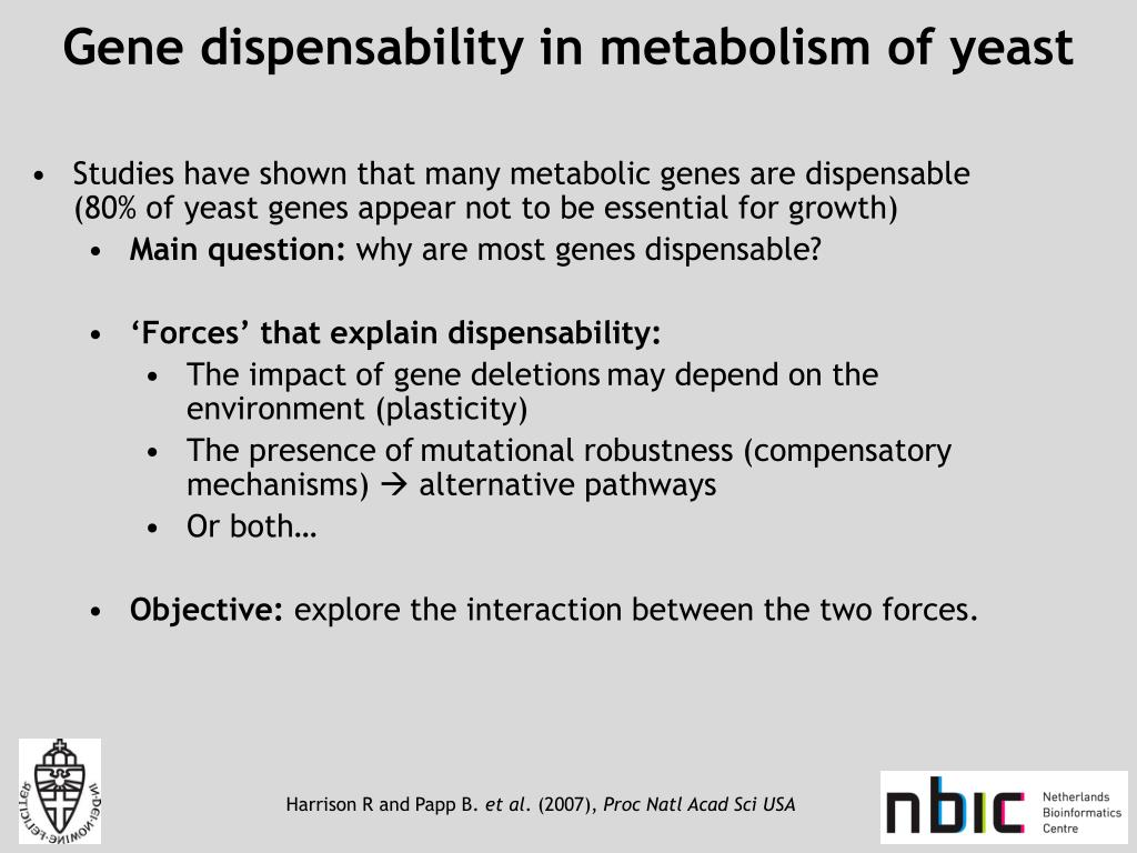 Gene dispensability in metabolism of yeast