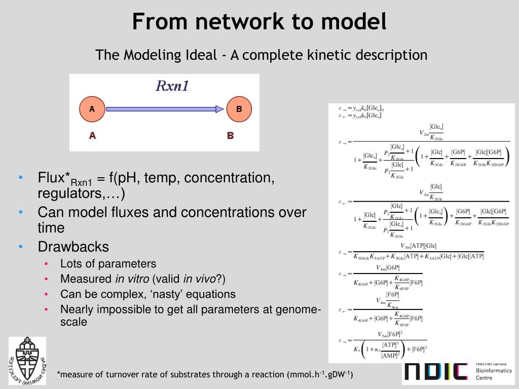 From network to model